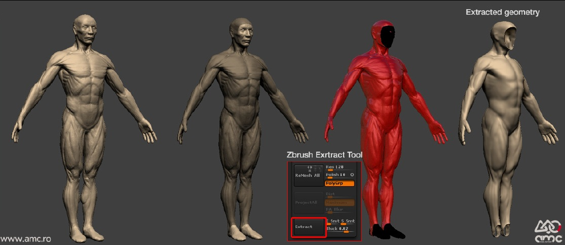 Diver Neoprene Suit Zbrush